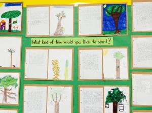 trees 2nd grade